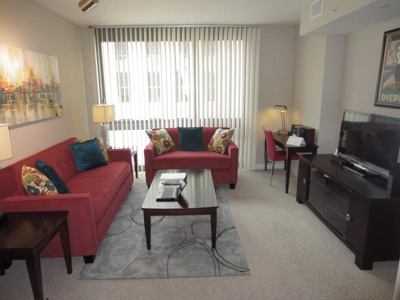 Living room - Lux Newseum 2BR on the Mall - Washington DC - rentals