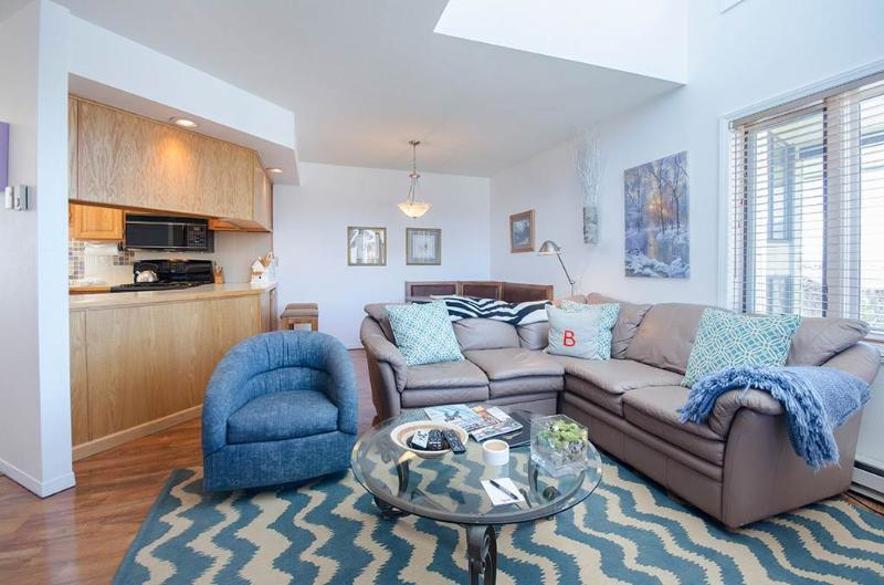 Hillsider Condominiums - HIL16 - Image 1 - Steamboat Springs - rentals
