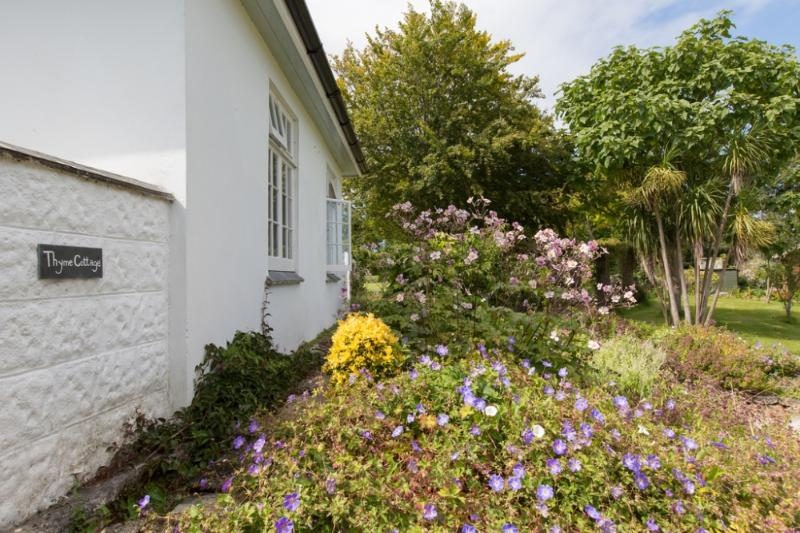Thyme Cottage located in St. Ives, Cornwall - Image 1 - Saint Ives - rentals