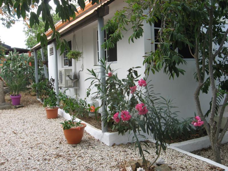 A spacious and quiet apartment in a big tropical garden. - Beautiful spacious apartment in center of Aruba - Oranjestad - rentals