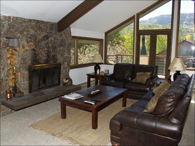 Living Room - Great Value Lodging - 3 Decks (2042) - Snowmass Village - rentals