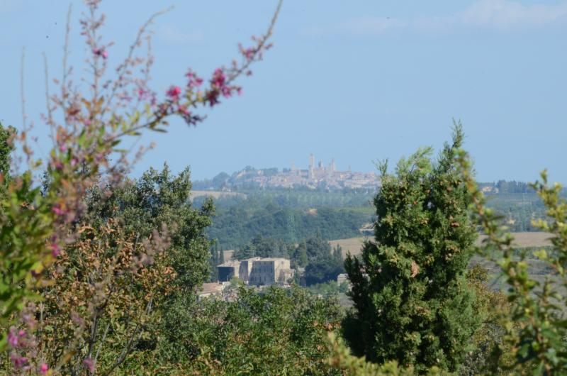 view on  San Gimignano from Stalla terrace - Charming Cottages with Gorgeous Views in Tuscany - Casole d Elsa - rentals