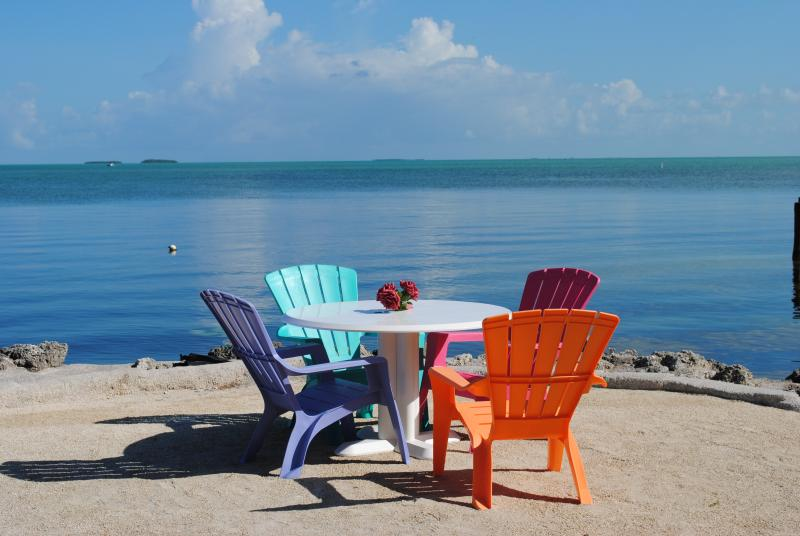 75190 Overseas Hwy - 28 NIGHT MINIMUM!!!!!!! - Image 1 - Matecumbe Key - rentals