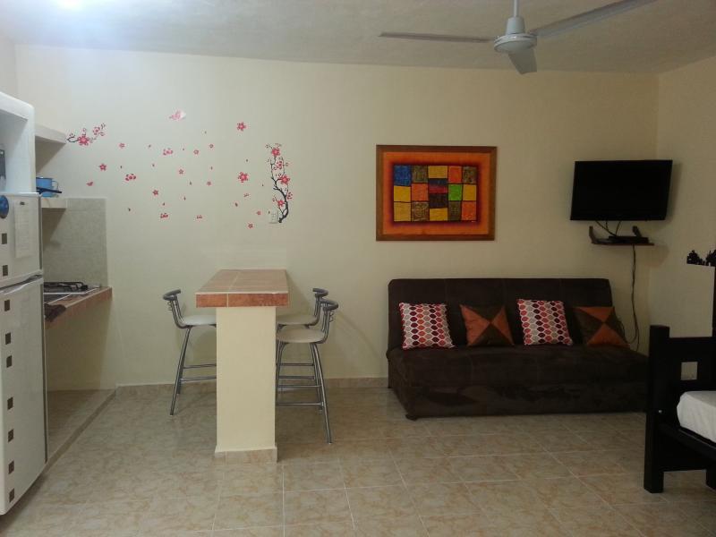 Apt. A - Cozy, Modern Minimalistic - Image 1 - Cancun - rentals