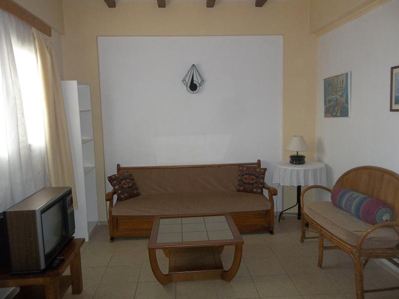Living room with fold out couch. - 2 bedroom apt  near beach wi-fi - Chios - rentals