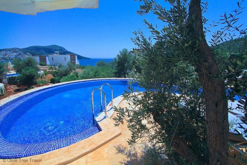 Likya View Villa - Athena - Image 1 - Kalkan - rentals