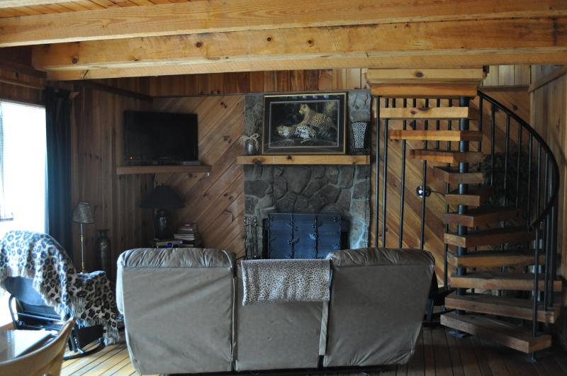 Leopard Living room - Affordable, Big Beautiful Cabins 6 miles to Helen - Helen - rentals