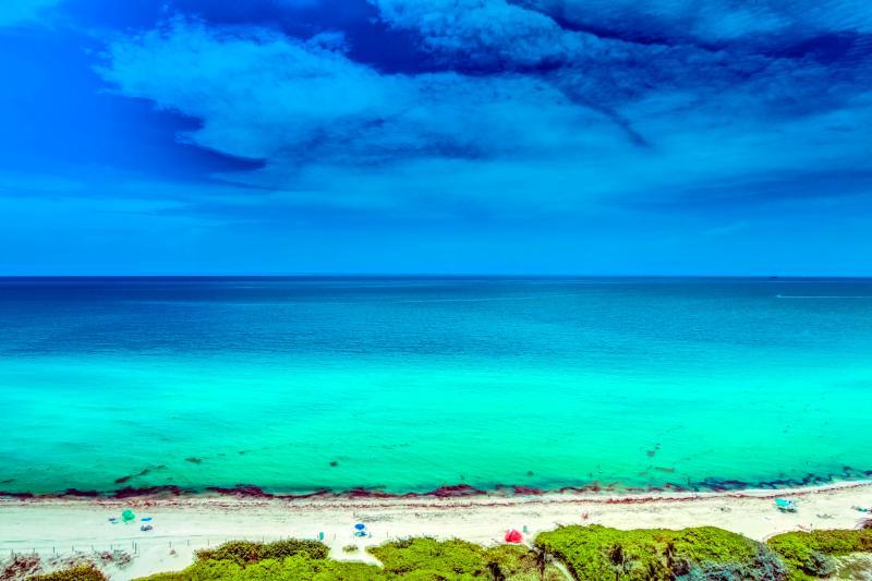 $ Ocean View Paradise MIA (5) - Image 1 - Miami Beach - rentals