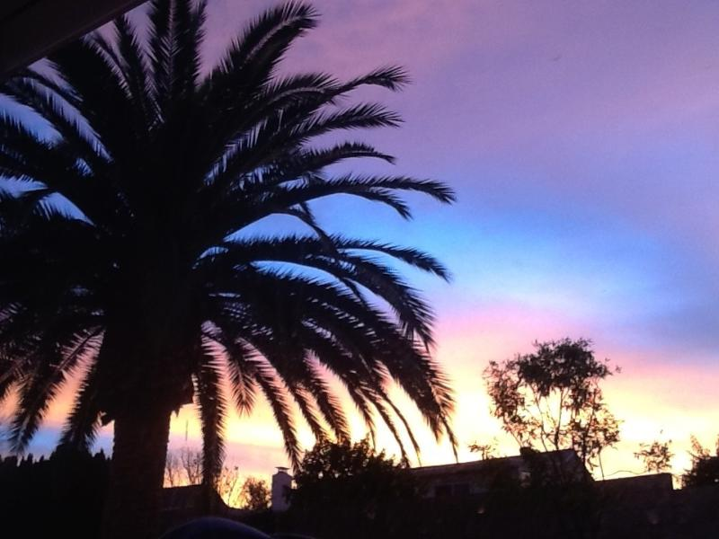 the morning view from the guest room - Laguna Hills -a perfect getaway vacation in OC - Laguna Hills - rentals