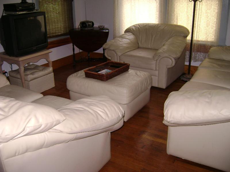 House living room - Zilker, SOCO, Downtown, Bouldin Creek  monthly - Austin - rentals
