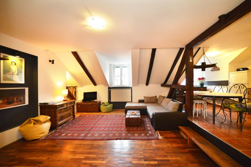 3 BEDROOM/120 m² APT IN VERY CENTER - Image 1 - Zagreb - rentals