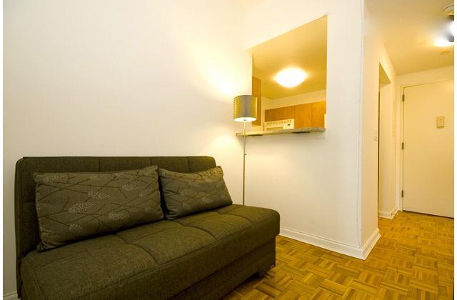 Luxurious Midtown 2 Bedroom apartment #8317 - Image 1 - New York City - rentals