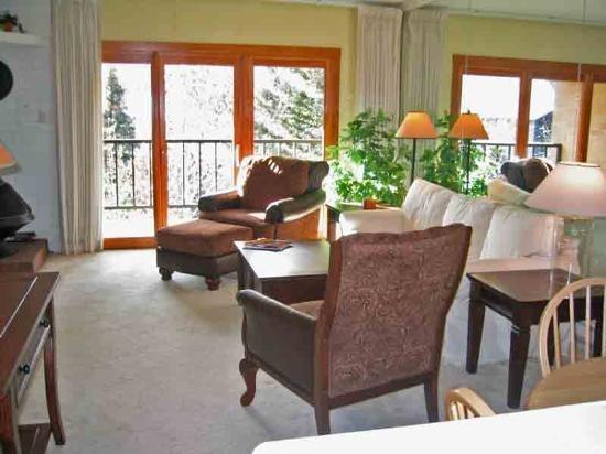 Nice sunny Living room  - Big Wood #F2, Ketchum - Sunny Big Wood Condo with Mountain Views; - Ketchum - rentals