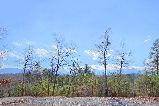 Fox Hollow Lodge - Image 1 - Pittman Center - rentals