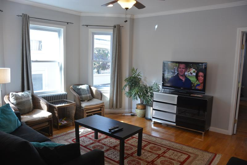 Luxurious Comfort  Home Close to T and Boston - Image 1 - Boston - rentals