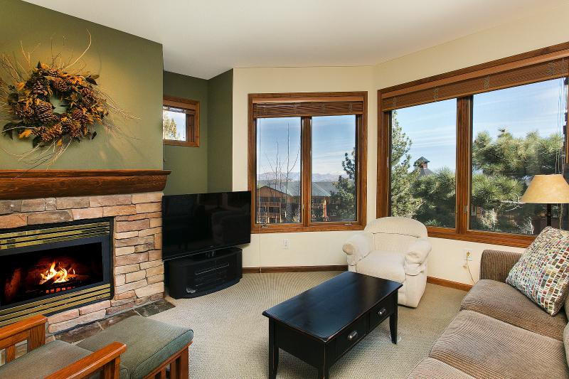 Eagle Run #110 Living Area With A Gas Fireplace And A Queen Sofa Bed - Eagle Run 110 - Mammoth Ski in Ski out Townhome - Mammoth Lakes - rentals