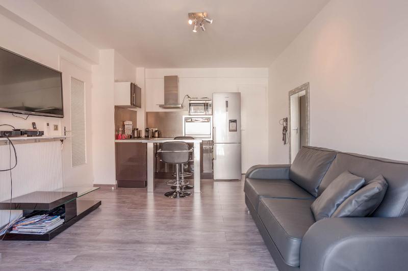 Amazing 1 Bedroom Apartment with a Terrace- Juan les Pins - Image 1 - Juan-les-Pins - rentals