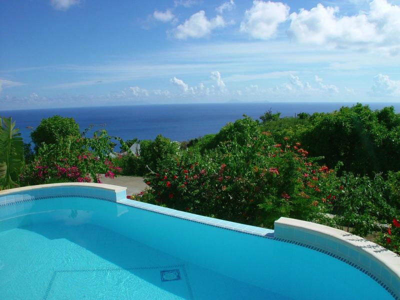 Splendid 2 Bedroom Villa with Private Pool & Terrace in Colombier - Image 1 - Anse des Flamands - rentals
