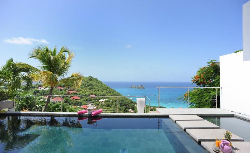 Marvelous 3 Bedroom Villa on the hillside of Colombier - Image 1 - Anse des Flamands - rentals