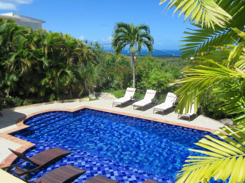 Fabulous Ocean Views-Gorgeous & Private Pool, Gardens & Fountains - Vieques' Most Private Getaway - Isla de Vieques - rentals