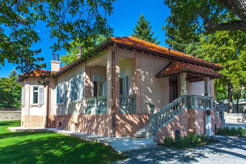 Luxury heritage villa Tripalo, Sinj - Villa Tripalo - luxury heritage villa in Sinj - Sinj - rentals