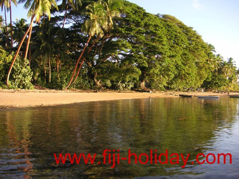 Beautiful natural Beach - Holiday Rental at Hans´ Place in Savusavu, Fiji - Savusavu - rentals