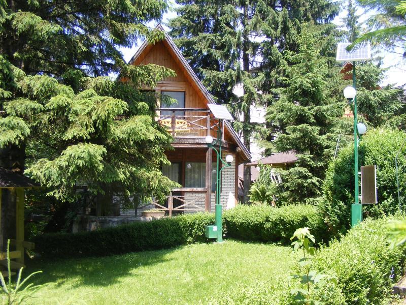 Summer - TraveLand Villas Poiana Brasov - Four-Bedroom Vill - Poiana Brasov - rentals