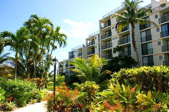 Our Court Yard - Ocean Front Coral Beach Condo, Beautifully Renovated - Freeport - rentals