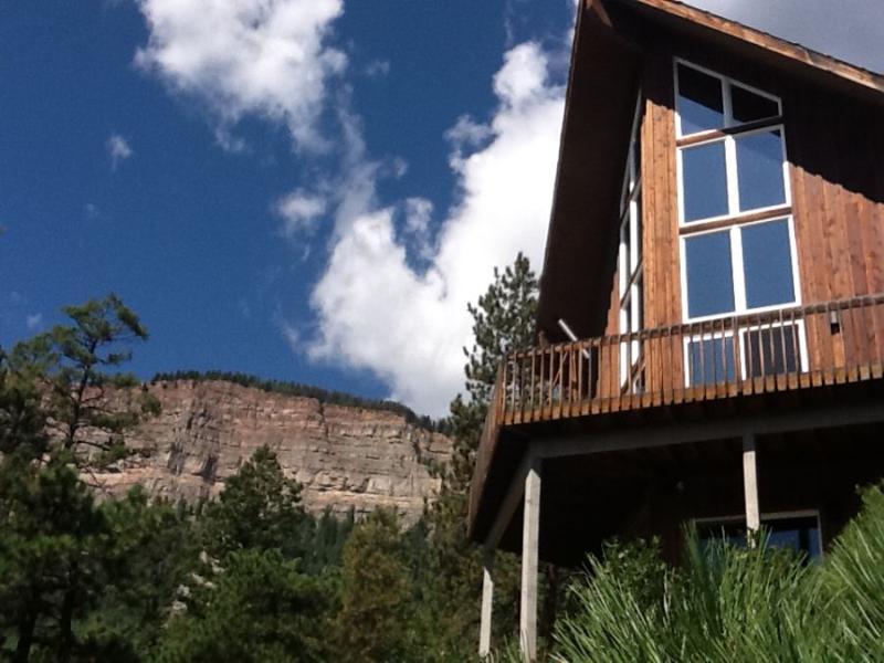 Red Door-house deck view - Red Door Cabin - Durango - rentals