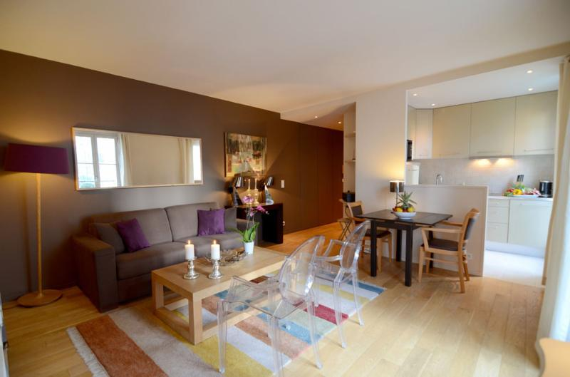Living room - Charming 1 Bedroom Apartment–Montparnasse in Paris - Paris - rentals