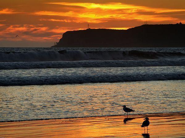 Enjoy Summer - Fabulous Coronado 5 bdrm Beach home - Image 1 - Coronado - rentals
