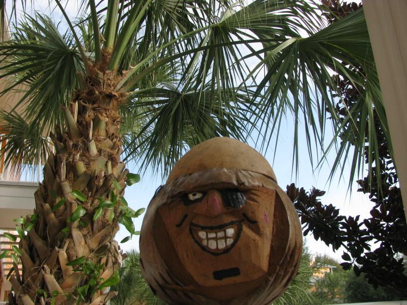 Coconut Jack--our mascot..lol - Your Tropical Oasis Awaits! - Davenport - rentals