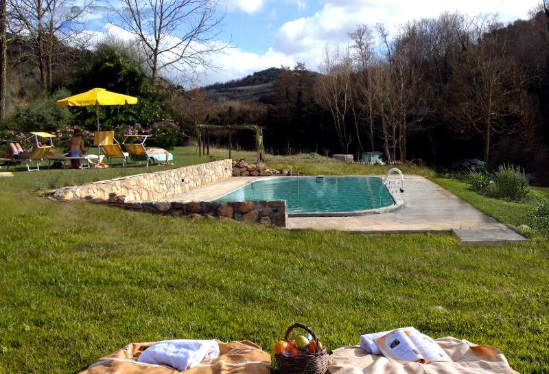Outdoor Pool - Molino di Amarrante in Chianti - Private Pool - Montaione - rentals