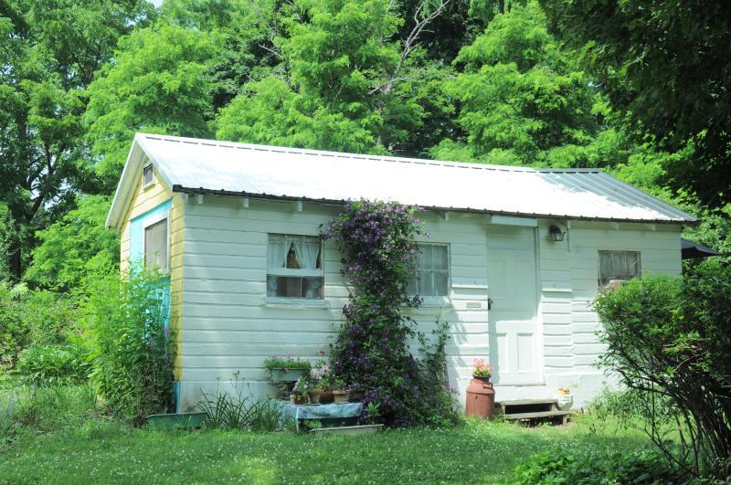 The Cottagette - Image 1 - Hector - rentals