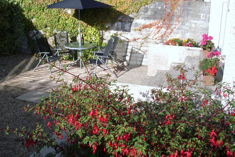 Sunny Patio Garden - Beautiful ground floor, centrally located, condo. - Wexford - rentals