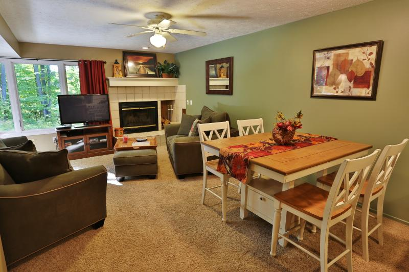 Beautiful 2 bedroom two bath condo - Trout Creek Condo Vacation Rentals - Harbor Spring - Harbor Springs - rentals