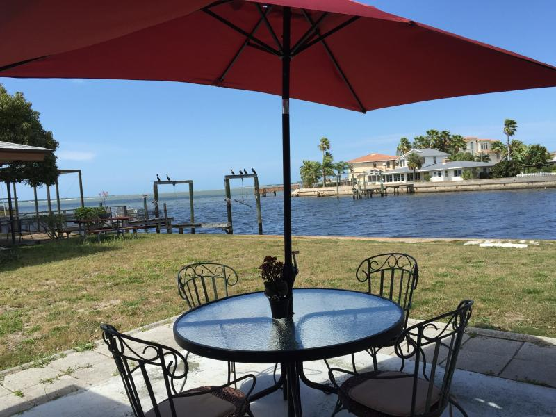 Peaceful afternoons of warm weather and aquatic life await - Water Front Dunedin House With Dock - Belleair Beach - rentals