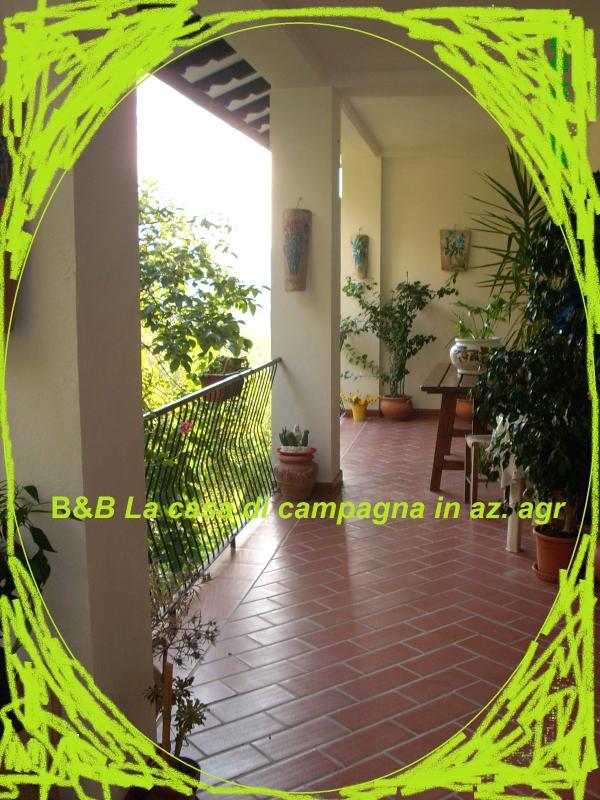 B&B Lacasadicampagna portico - B&B La casa di campagna in az. agricola - Todi - rentals