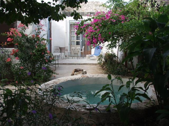 House and garden with pool and patio - Charming house  with garden in center - Santiago - Merida - rentals