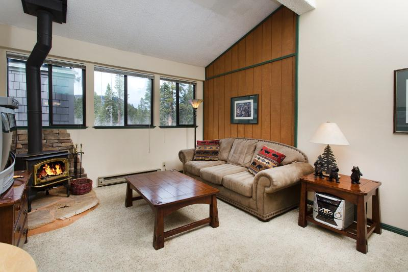 The Summit #A232 Living Area with A Queen Sofa Bed and A Wood Burning Fireplace - Summit A232 - Mammoth Condo - Walk to Eagle Lift - Mammoth Lakes - rentals