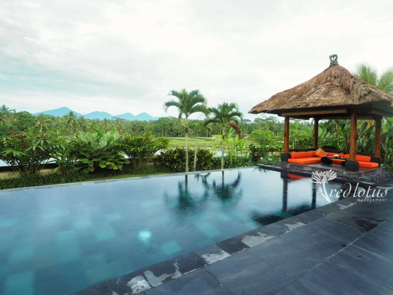 Villa Rumah Lotus Ubud luxurious,private,2 bedroom - Image 1 - Ubud - rentals