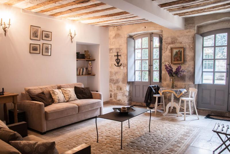 Big two level apartment (9 pax) in central Avignon with shaded private courtyard. Quiet and luxuous - Image 1 - Avignon - rentals
