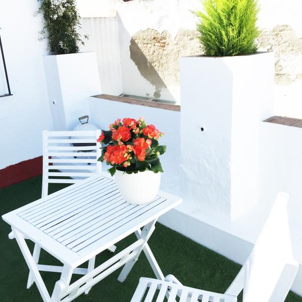 Terraza/RooftopTerrace - Cosy Apartment in Old Town of Cadiz with terrace! - Cadiz - rentals
