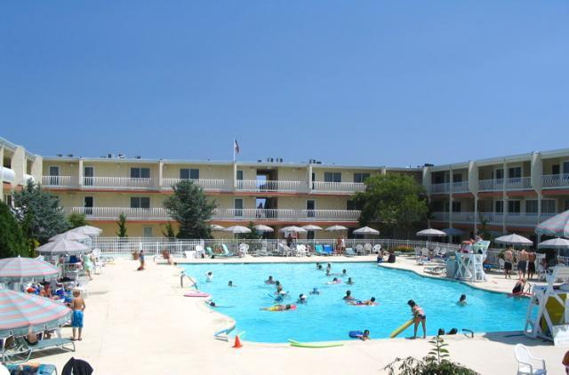 Families enjoying olympic sized heated pool - Oceanfront Condo Directly On Beach! - Normandy Beach - rentals