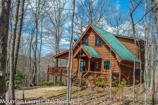 WOLF`S DEN- 2BR/2BA, SLEEPS 6, HOT TUB, WIFI, FLAT SCREEN TV`S IN EVERY ROOM, FIREPIT, PET FRIENDLY, ONLY $99-125 PER NIGHT!! - Image 1 - Blue Ridge - rentals