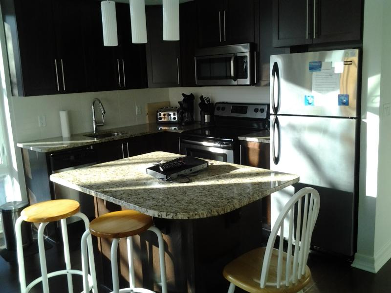 Open Concept Kitchen Island - 2beds and 2baths Luxury Condo Downtown Parliament - Ottawa - rentals