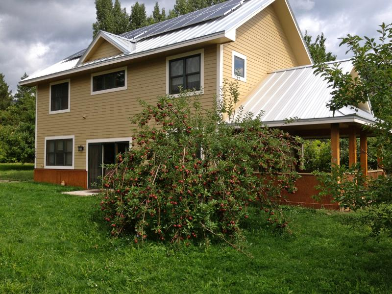 The Cider House with apple tree full in the fall - Cider House - Durango Mountain Views - Durango - rentals