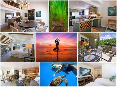 Wailea Inn - Perfect Maui Family & Friends Vacation Retreat - Kihei - rentals