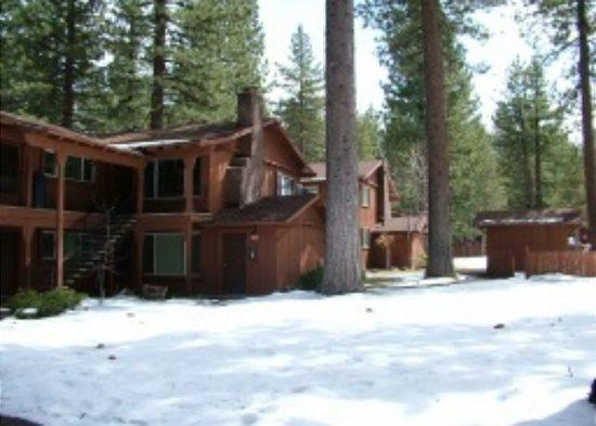 Great upgraded condo with summer pool, half block to free ski shuttle, walk to restuarants - Image 1 - South Lake Tahoe - rentals