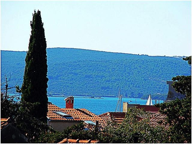 sea view (house and surroundings) - 2315 B(2+2) - Biograd - Biograd - rentals